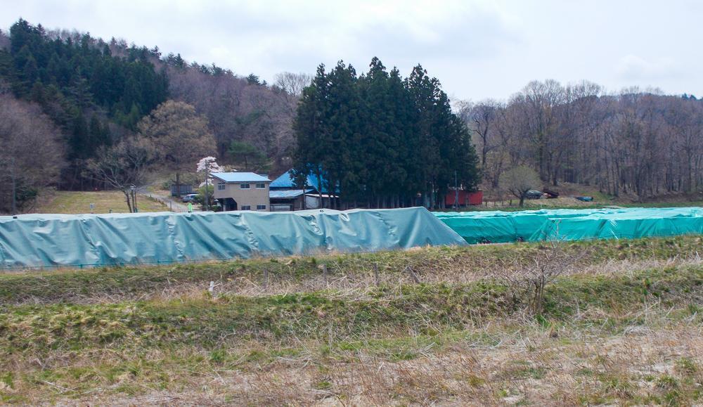 見渡せばどこにでも積み上げられた除染土壌のフレコンバックが見える