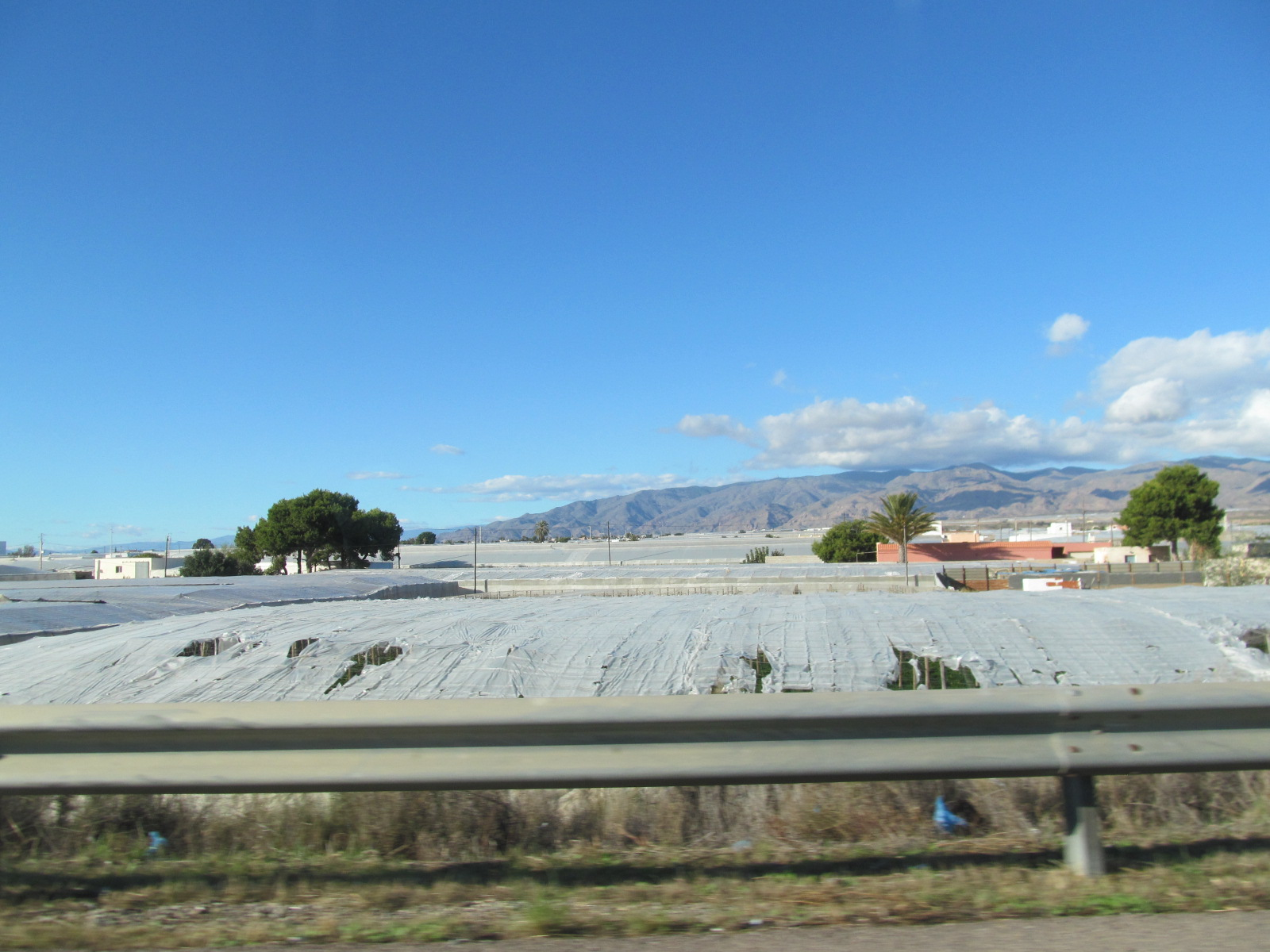 2 greenhouse